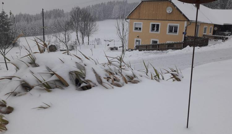 Winter (© Bauer Christina)