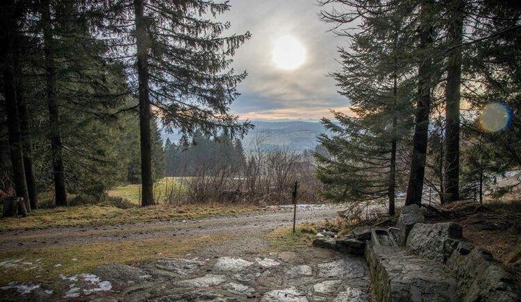 V4 Poimer Panoramaweg (© Mühlviertler Hochland)