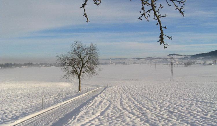 Loipenspur rund um Sankt Georgen im Attergau. (© Tourismusverband Attersee-Attergau)