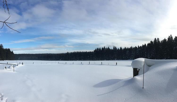 Landschaft im Winter 3 (© Privat)