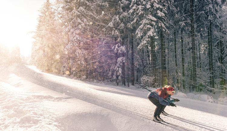 Eine Langläuferin auf einer Skating gespurten Loipe in Schussfahrt. (© Oberösterreich Tourismus GmbH | David Lugmayr)