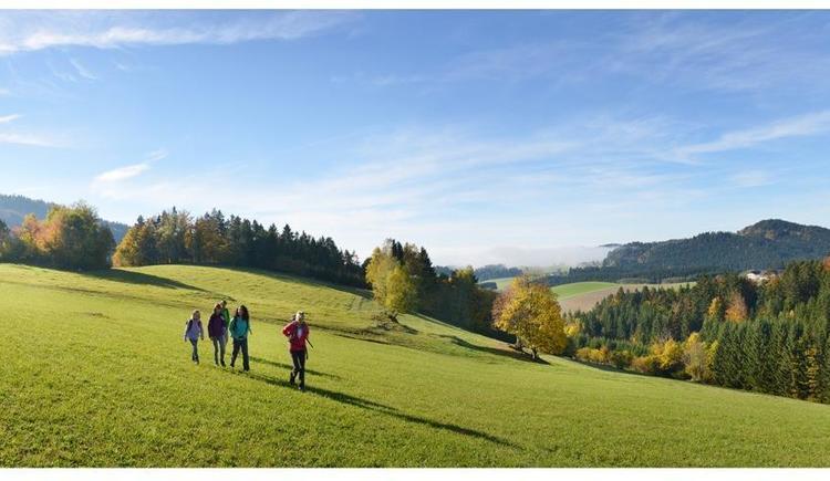 Wandern im Herbst (© OÖ Tourismus GmbH | Erber)
