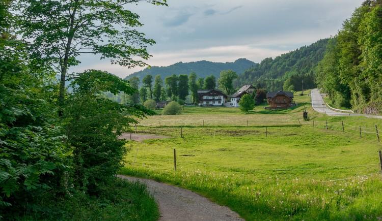 Hintersee Rundweg Wandern in der FuschlseeRegion 10 (© Best Mountain Artists)