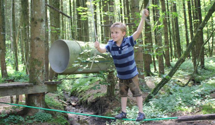 Kind im Niederseilgarten am Glücksweg. (© Tourismusverband Attersee-Attergau, Elisabeth Baumann)