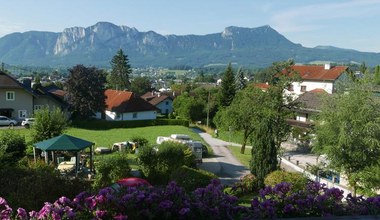 Aussicht vom Balkon auf die Wiesen, Häuser, Bäume, im Hintergrund die Berge, im Vordergrund Balkonblumen. (© Ramsauer)