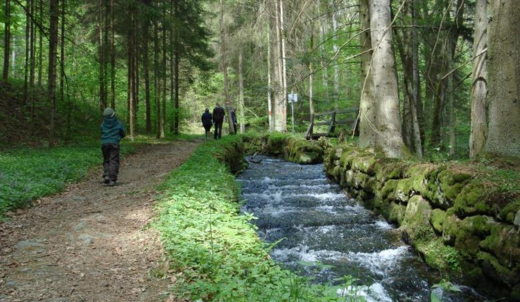 Der Schwarzenbergische Schwemmkanal begleitet Sie auf dieser Etappe ein Stück des Weges.