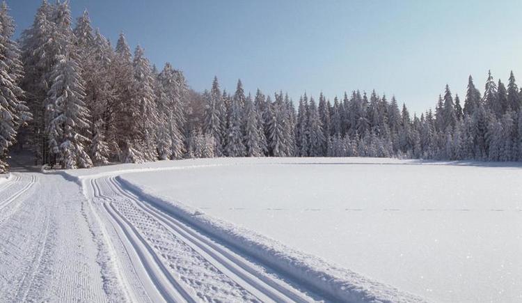 Langlaufspuren im Schnee (© OOET_Guenter Hoefer)