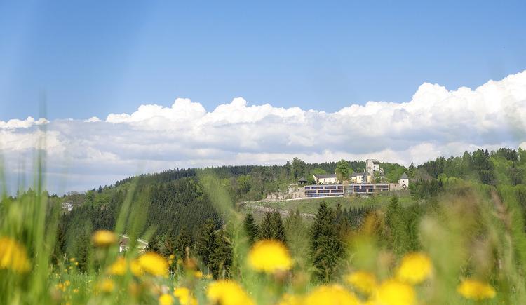 Schatz.Kammer, Burg Kreuzen, Bad Kreuzen im Mühlviertel, Ansicht. (© Burg Kreuzen Betriebs GmbH)
