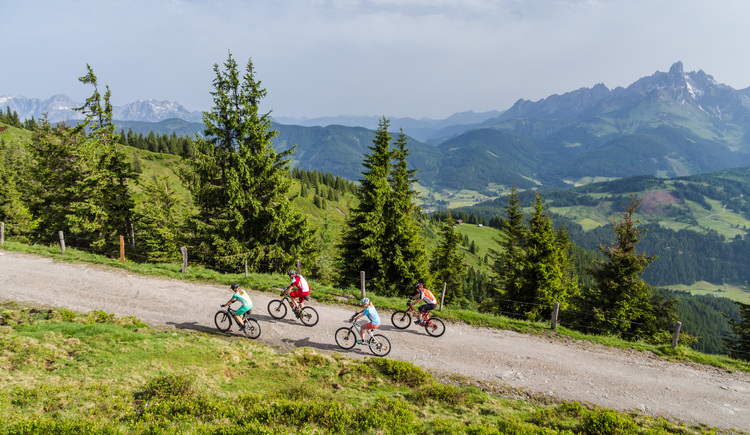 Mountain biking in the Alps of Austria on the Dachstein circuit. (© © Coen Weesjes / TVB Filzmoos)