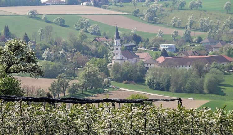 zm_047 (© Naturpark Obst-Hügel-land)