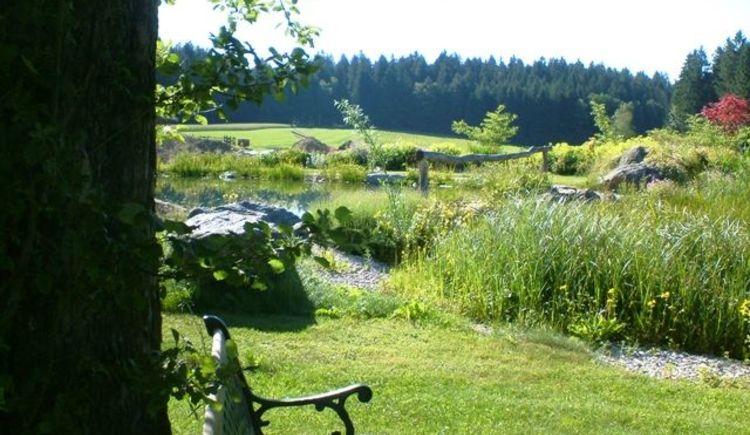 Genießen Sie die Ruhe am Teich