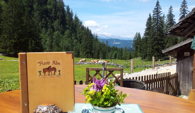 After a steep ascent, whether from Gosau or Hallstatt, the panorama on the Rossalm provides for relaxation.
