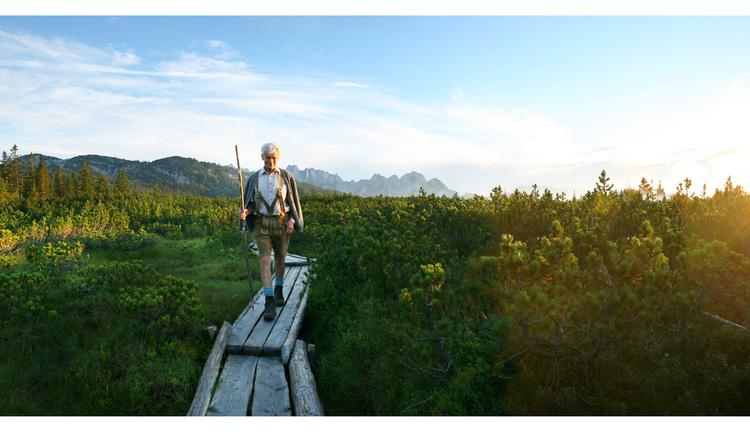 Über den Holzsteeg geht es zum Löckersee. (© OOE Tourismus/Röbl)