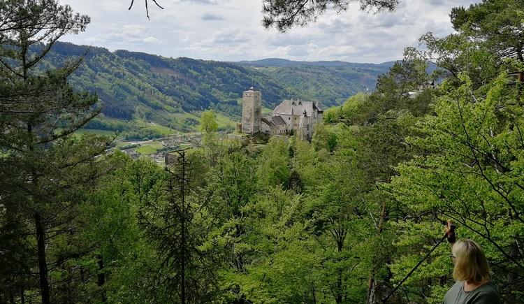 Blick auf das Schloss Marsbach. Aussichtspunkt bei Wanderung von Marsbach in Richtung Ruine Haichenbach. (© Luger)