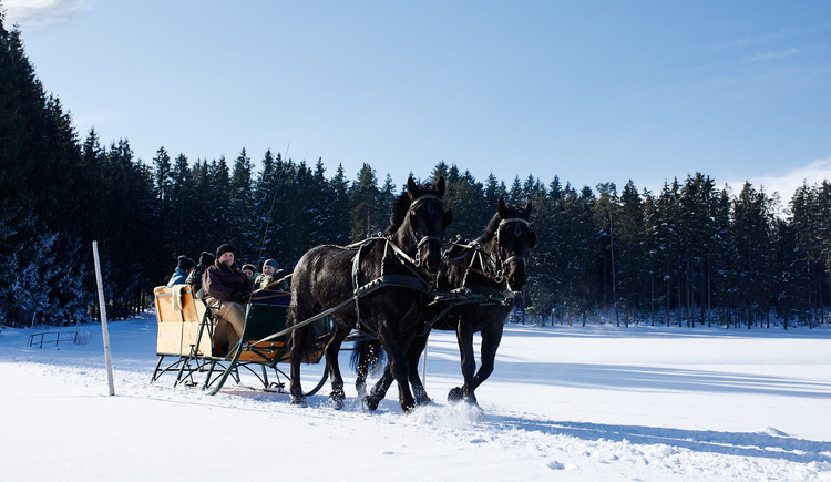 Pferdeschlitten-Reingruber-11-11-59-2 (© Reingruber)