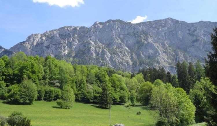 Hoellengebirge (© Familie Loy)