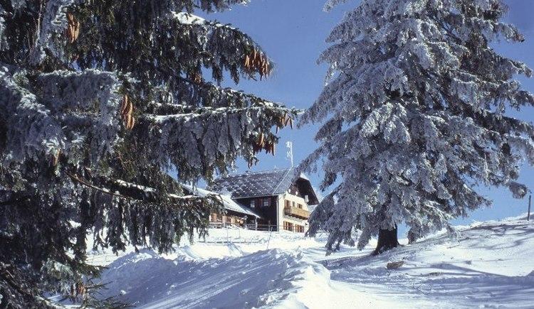 schoberstein-winterwandern-verkl (© TV Steyrtal)