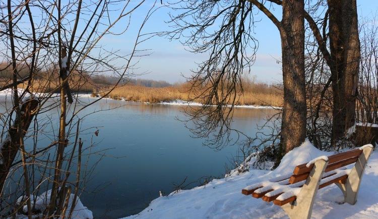 Winterwanderung in Kirchdorf am Inn. (© Helga Schachinger)