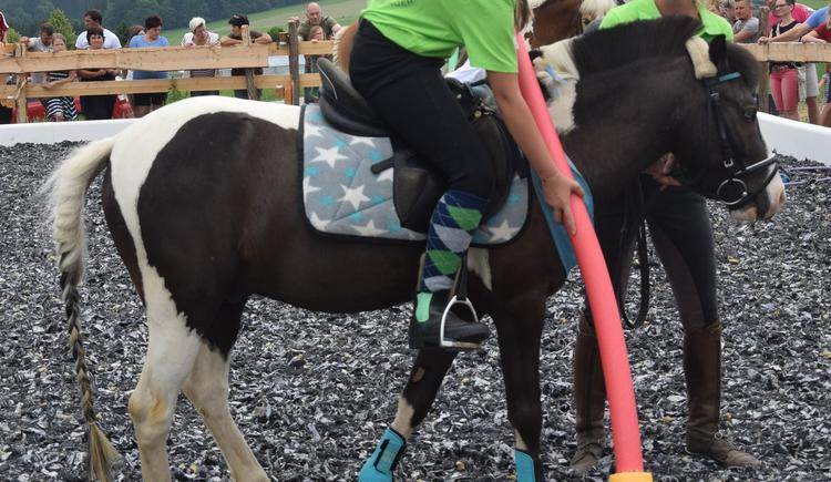 Pony & Fun Stunden (© Privat)