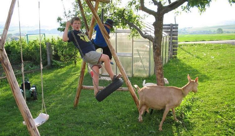 Spielen am Bauernhof (© Privat)
