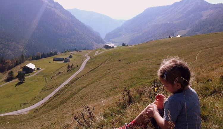 Traumhafte Bergwelten und Almen