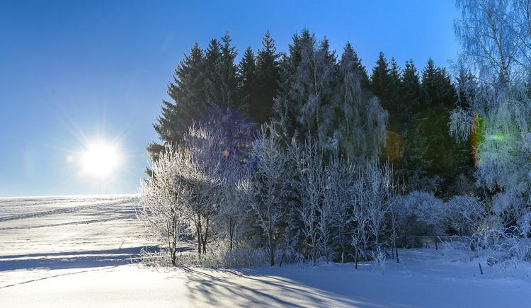 S3 Stifter panoramaweg (© Helga Baier)