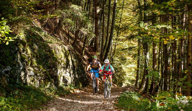 Auf dem alten Rodelweg Trail gehts vom Anzenberg hinunter nach Anzenau auf der E-Bike Strecke. (© Erwin Haiden Bikeboard.at)