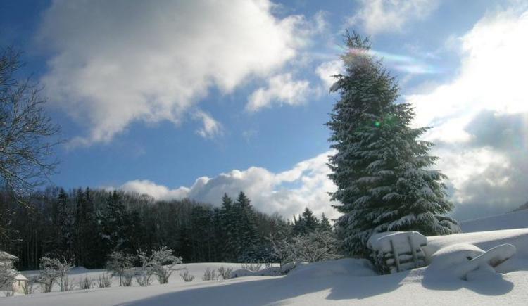 Winterlandschaft (© Privat)