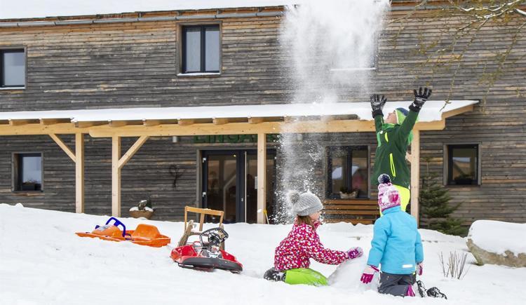 Schneezauber InDaWiesn (© by Gästehaus