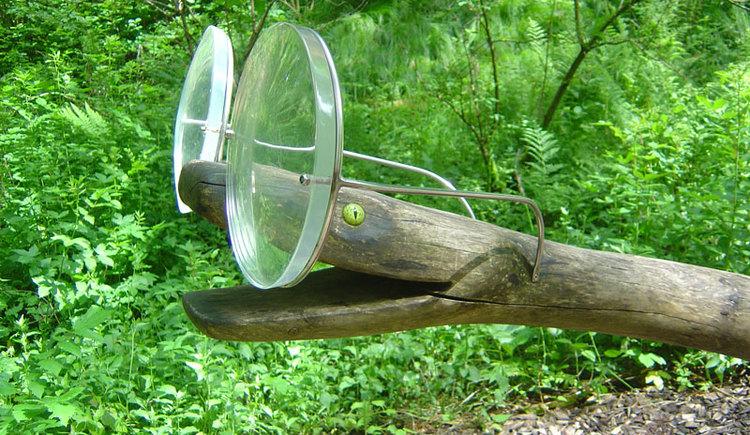 Brillenschlange im Gl\u00e4sernen Tal in Wei\u00dfenkirchen. (© Tourismusverband Attersee-Attergau, Klaus Costadedoi)