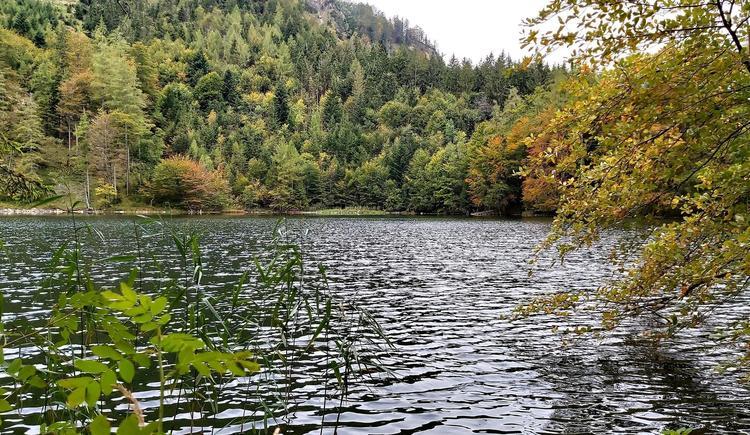 Eibensee im Herbst (© CA)
