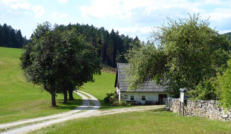 Trockensteinmauer in Hadersdorf (© Tanja Mittermair)