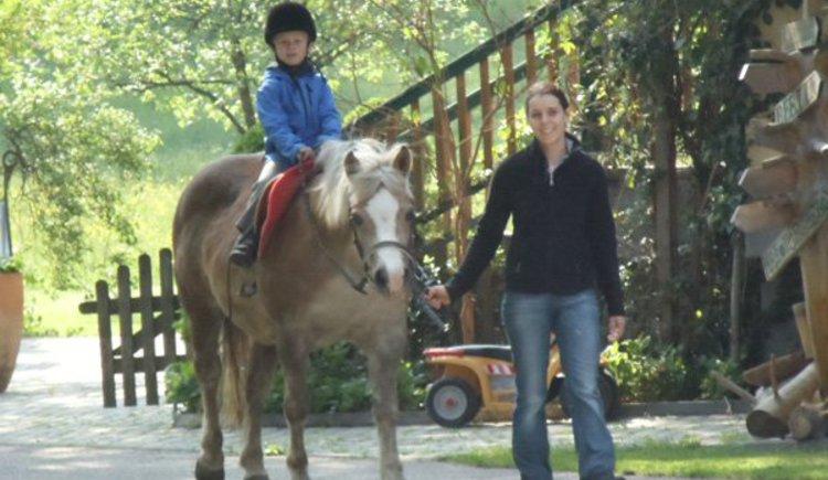 Pferd; Landhotel Waldmühle