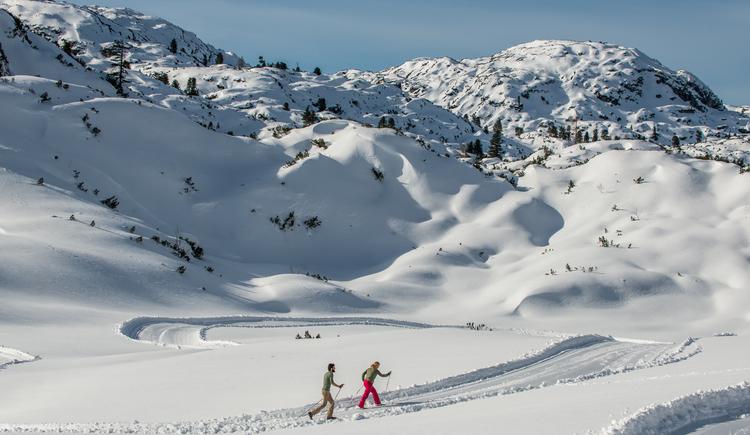 Wie am Bild zu sehen ist führt die Loipe durch wunderschöne Winterlandschaft über das Almbodengebiet am Dachstein Krippenstein. (© Pictoresk.at)