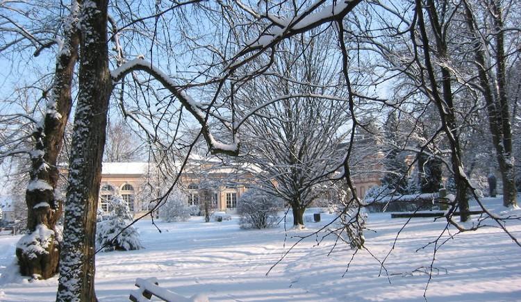 kurpark winter 1.JPG (© Kurpark Winter)