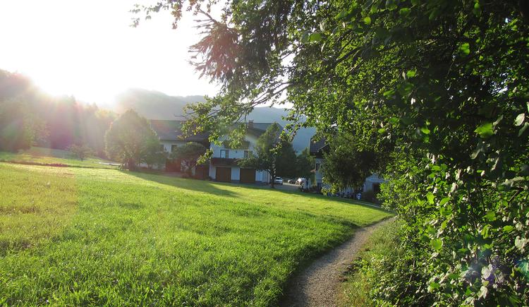 Gemütlicher Weg von der Erlachmühle ins Helenental.