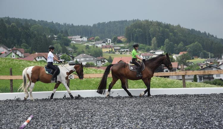 Unsere 2 Großen Pferdis (© Isabella Ritter)