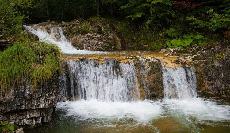 `Wald-Wasserzauberweg Hintersee`