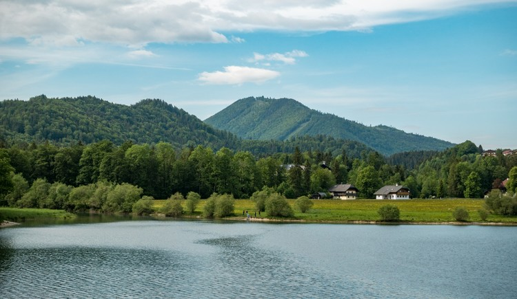 Hintersee Rundweg und Eiskapelle Faistenau Wandern in der FuschlseeRegion 04 (© Best Mountain Artists)
