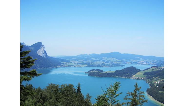 Blick auf den See, die Landschaft und die Berge. (© Tourismusverband MondSeeLand)