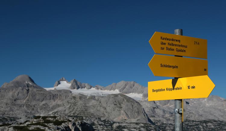 Wie das Bild zeigt sind die Wanderwege am Dachstein Krippenstein gut beschildert. Im Hintergrund sieht man den Dachstein Gletscher. (© Viorel Munteanu)