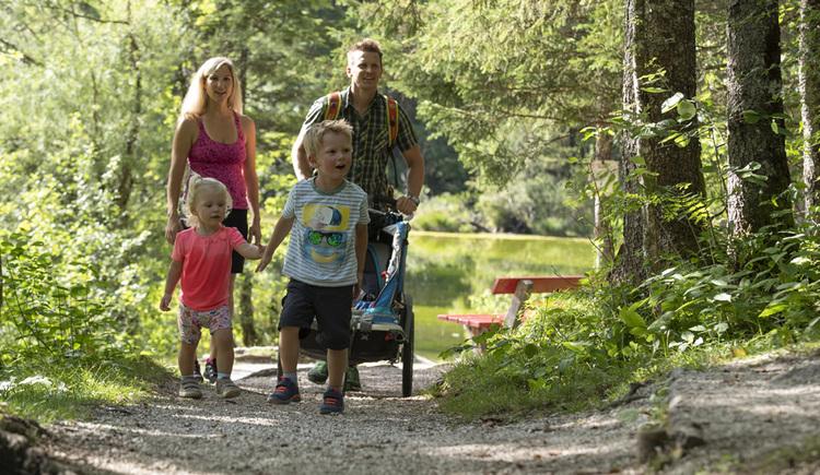 Eine Wanderung rund um den Koppenwinkelsee ist für Familien auch mit Kinderwagen bestens geeignet. (© RudiKainPhotografie)