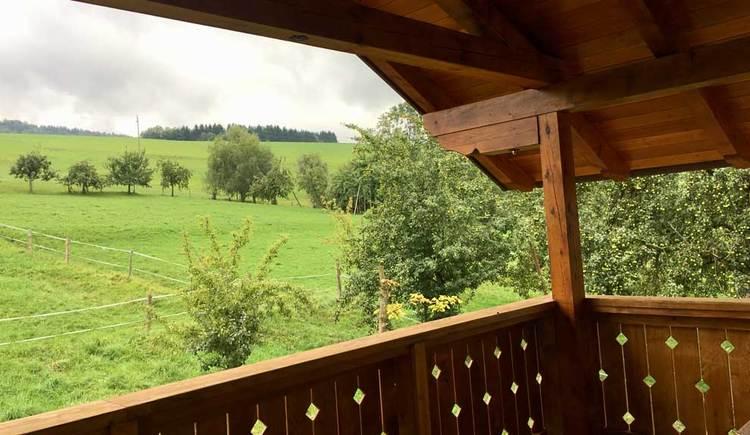 Ausblick von der Loggia auf grüne Wiesen und Bäume