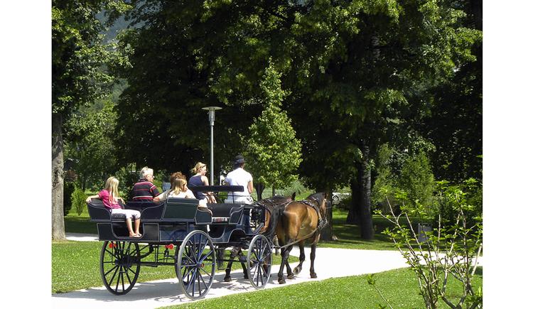 Personen in einer Kutsche, im Vordergrund Pferde, seitlich Wiesen, im Hintergrund Bäume. (© Tourismusverband MondSeeLand)