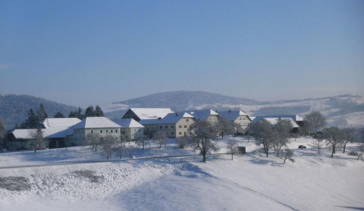 Ein idylisches Dorf im Winter