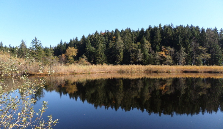 Aufnahme vom Egelsee im Herbst. (© Sandra Mayr)