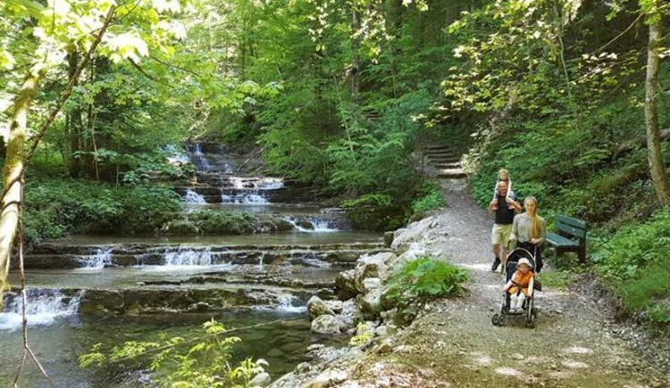 Wald-Wasser-Zauberweg