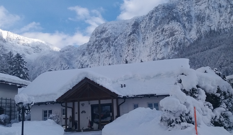 Landhaus Bergidyll **** umgeben von Bergen