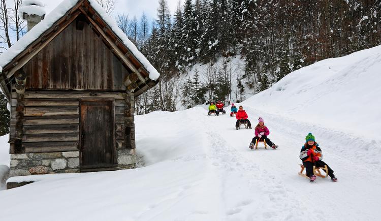 Und los geht die Rodelpartie! Hier siehst du eine Gruppe Schlittenfahrer im Bereich Trockentannalm, links davon eine kleine Hütte. (© FR Dachstein Salzkammergut, Munteanu Viorel)