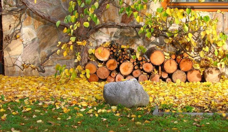 es wird Herbst (© Stoderhof)